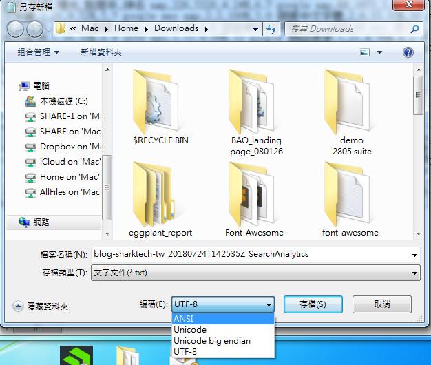 SearchConsole記事本ANSI
